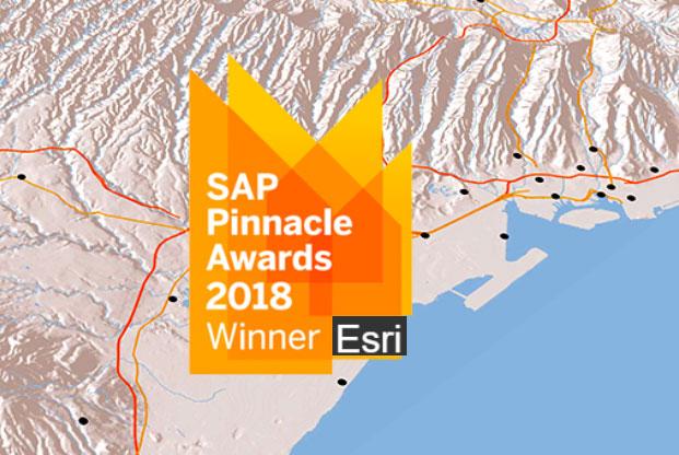 Esri была удостоены награды SAP за тесную интеграцию технологий компаний